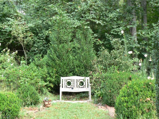 Bench in cutting garden
