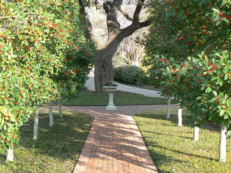 Focal Point Recreating Eden Landscape Blog